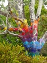 Yarn-bombing in Mullumbimby