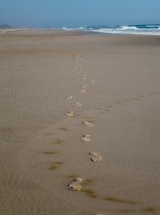 Solo beach walk